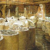 Musée des minéraux et des fossiles à Rougemont (Pays d'Enhaut - VD)