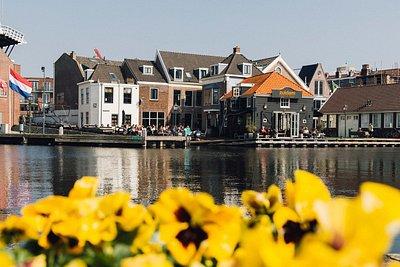 Blick über Blumen auf den Fluss in Haarlem