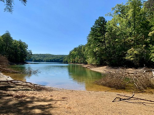 Several inlets—like this one—along Blue Ridge Lake.