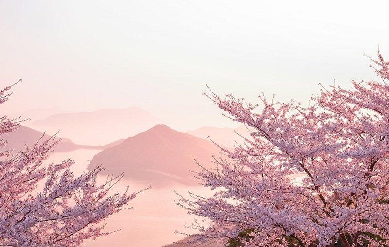 柴雲出山(香川・三豊)
