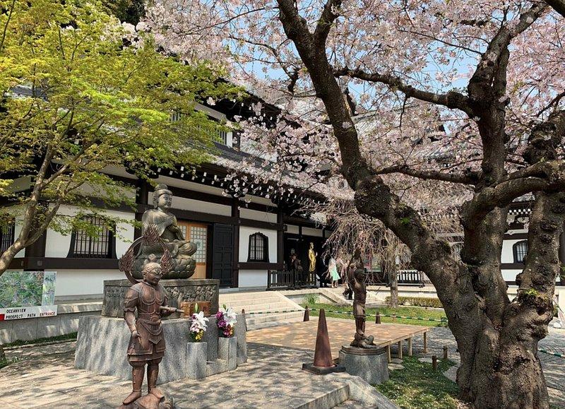 長谷寺(神奈川・鎌倉)