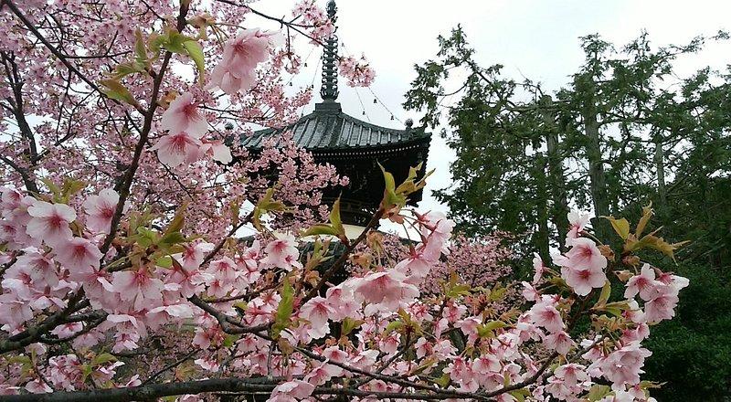 清涼寺(京都・京都)