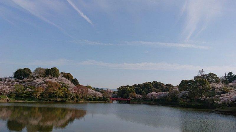 甘木公園(福岡・朝倉)