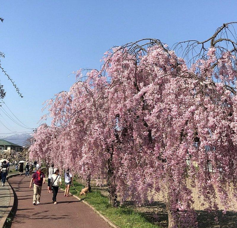 日中線記念自転車歩行者道(福島・喜多方)