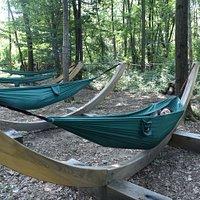 Comode ed avvolgenti amache per un relax completo a contatto con la natura e per guardare il bosco da un altra prospettiva.