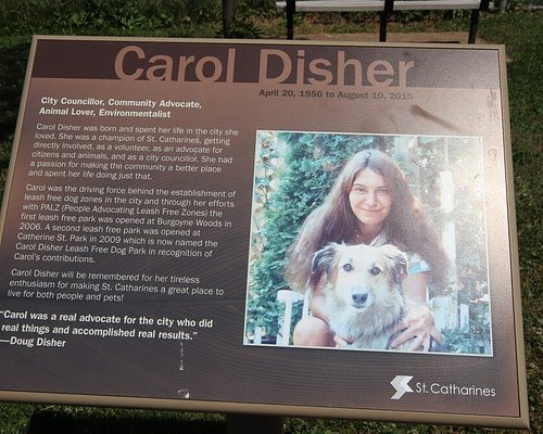 Carol Disher
