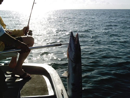 I can't wait to go back and have a nice cold beer after a good day of fishing.