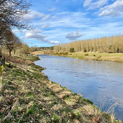 The River Don (Deathan in Gaelic) flows 131 km from the Grampian 🏔 , through Aberdeenshire to the North Sea. It's a prime river for salmon and sea-trout fishing.