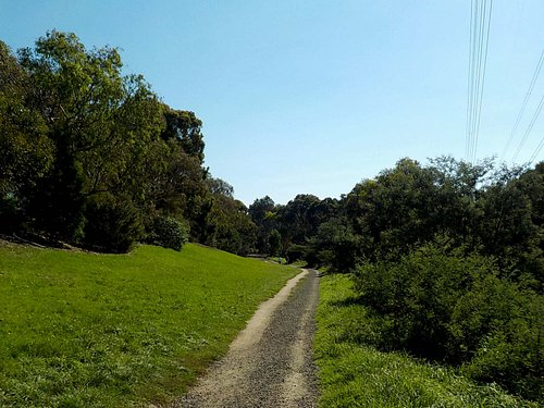 Unmade Merri Trail in the park