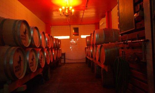 Adega Belém's barrel cellar, where grand reds sleep, awaiting the day of metamorphosis!