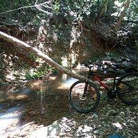 Smithfield Mountain Bike Park