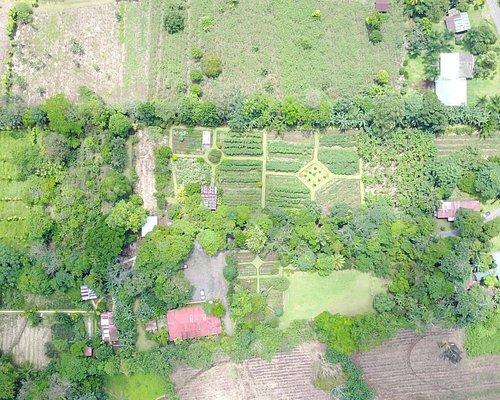 Our 8,6 acres organic farm / Nuestra finca orgánica de 3,5 hectáreas
