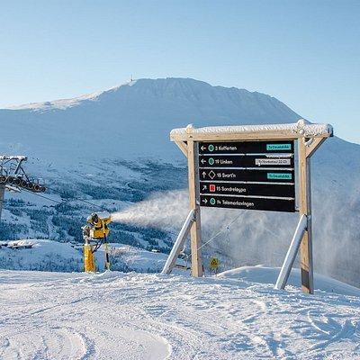 At the top on Skipsheisen. photokred @Ole Kristian Samuelsen