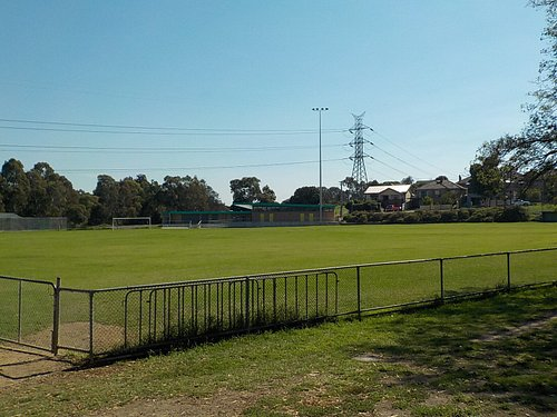 open expanse of playing field