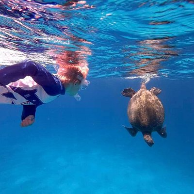 Snorkeling with a sea turtle