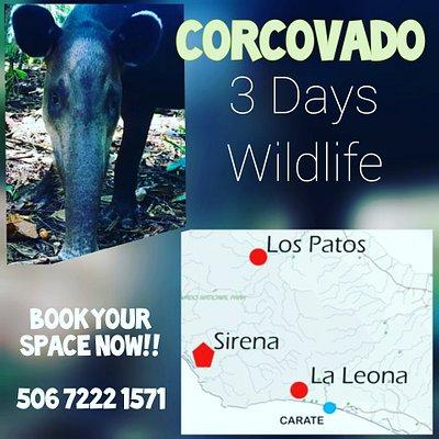 Corcovado 3 days info