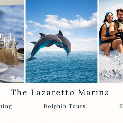 "The Lazaretto Creek Marina and Capt. Mike's Dolphin Tours have been offering the best in dolphin tours, sunset cruises, and waterfront Dining from the serenity of Tybee Island, Georgia for thirty years. We take pride in our marina and making sure our guests truly enjoy their ""Tybee Time"". Stop by our restaurant and try the freshest seafood right off our docks at Coco Loco's grille; take a relaxing kayak tour or Dolphin tour. We look forward to seeing you !"