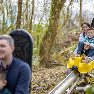 We can't wait to welcome you to The Black Bull Run, Ireland's first and only Alpine Coaster.  Who wants to hurtle through Colin Glen Forest on our coaster? Twisting and turning, downhill and up, through tunnels and in and out of the trees – while you control the speed on this wonderful woodland course.   Opening Summer 2021.