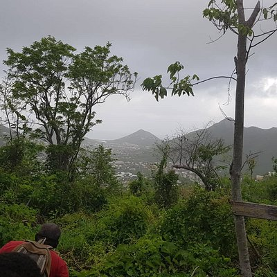 Beginners and Avid hikers find the trails great exercise and a great time to be with nature and feel the vortex of positive energy on the island. Sit and meditate or hike for miles. Many hikes to choose from