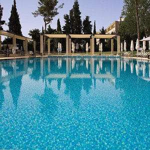 Swimming pool surrounded by landscaped Gardens