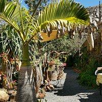 Montecristo de Gran Canaria