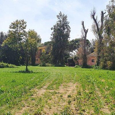 Sentiero Pasolini
