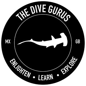 Cortez Expeditions - The Dive Gurus