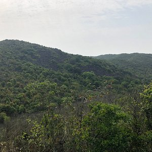 Luk Chau Shan (Rock Forest) seen from a smaller hilltop to the north
