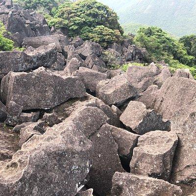 Luk Chau Shan (Rock Forest)  - 2