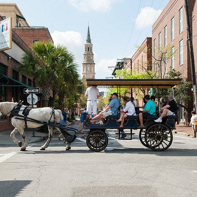 Daytime group carriage tour