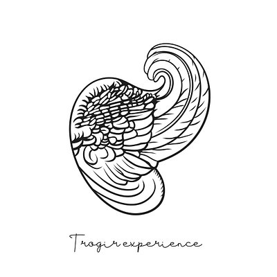 Trogir experience