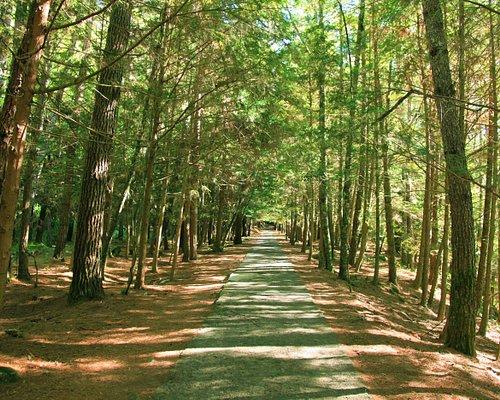 Taoshan trail