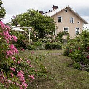 Trädgården ligger vid en gammal skola från 1800-talet i Vallby utan för Enköping.