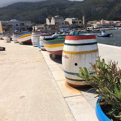 Barche 🚣🏿 ornamentali multicolore !