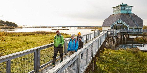 Visit Sweden - Jonas Ingman - Apr 2021