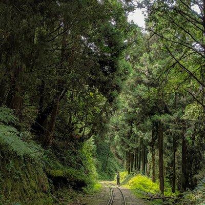 Shuishan Trail