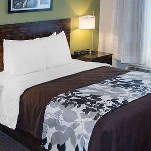 Designed to Dream Hotel