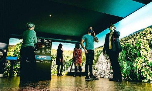 Musée du Vin Brotte:  présentation des différents travaux de la vigne tout au long de l'année