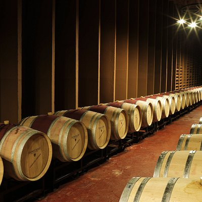 where the fine wines are aged!