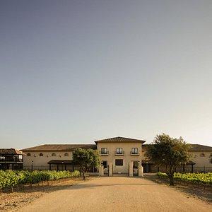 Acceso principal a Bodega Sierra Norte en La Roda. Edificio estilo cottage rodeado de viñedos.