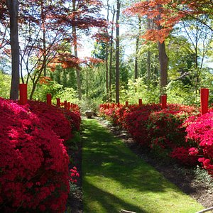 The Red Garden is in full bloom at LongHouse!  Make a reservation and come see it in all its glory!