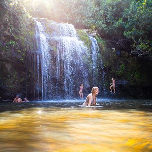 Take a dip in Hawaiian waterfall with Hawaii Forest & Trail