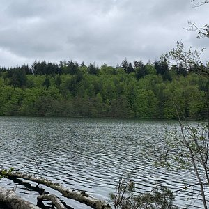 Vue over søen