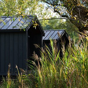 Our inviting king cabins in nature.