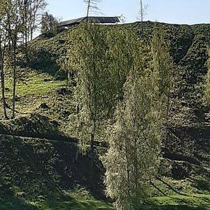 """Nordvästra delen av  """"Otepää Town Hill"""" - där den gamla biskopsborgen  numera är helt överväxt."""
