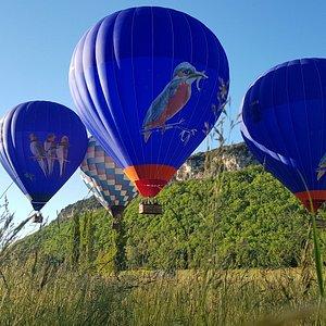 Découvrez le Périgord à bord de nos montgolfières bleues décorées d'oiseaux.