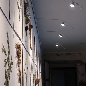 Side view of Indigenous Wildlife exhibition