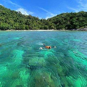 นักท่องเที่ยวชาวต่างชาติ นิยมพายเรือคายัคมาจอดไว้ริมชายหาดแล้วดำน้ำดูปะการังน้ำตื้นหายากเช่น ปะการัง7สี(จุดดำน้ำตื้นอีก 3 แห่งที่สามารถพบเห็นปะการัง 7 สีได้ก็คือ จุดดำน้ำตื้นบริเวณ ร่องน้ำจาบัง , เกาะหินซ้อน และ เกาะผึ้ง)ครับ