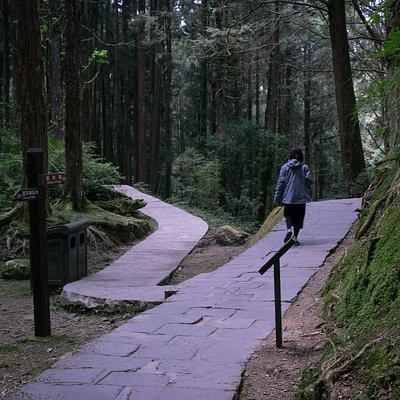 Zhushan Footpath