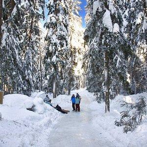Eisweg Engadin / Engadin Ice Trail (Sent GR)
